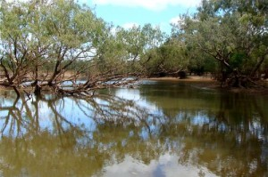 The beautiful Archer River