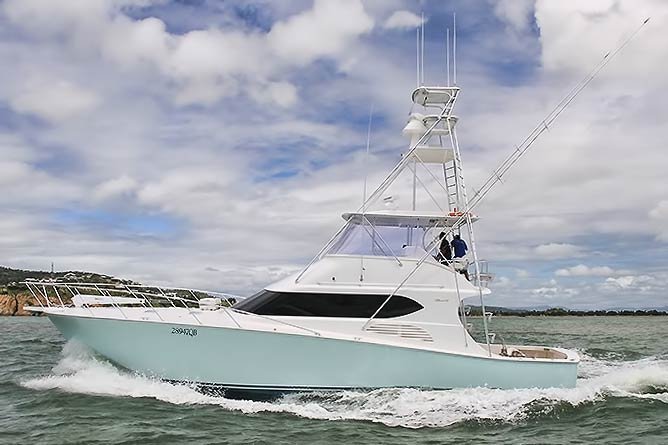 Giant black marlin fishing cairns kekoa sports fishing for Marlin fishing charters