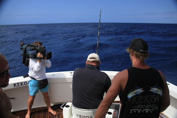 Experience a Giant Black Marlin Live Aboard Trip: Video