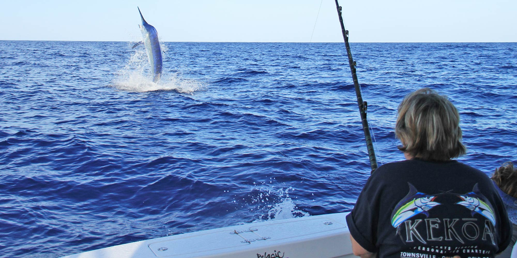 giant-black-marlin2