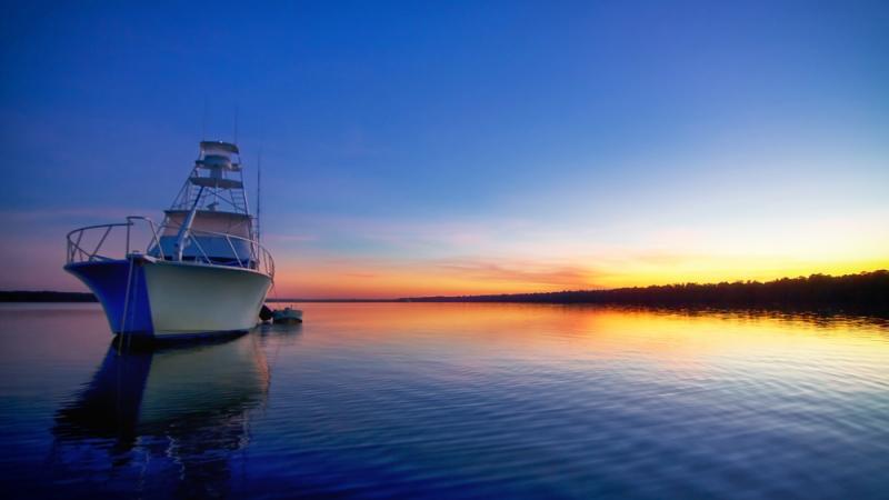 Recent Images – Gulf Season