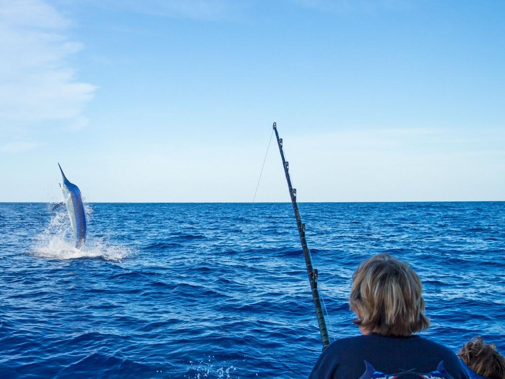 2017 Giant Black Marlin Season Dates – Filled!